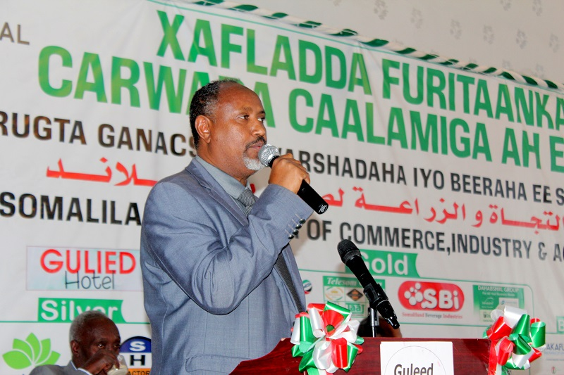 Cabdirashiid Faarax Ahmed Maamulaha Shirkadda Dahabshiil