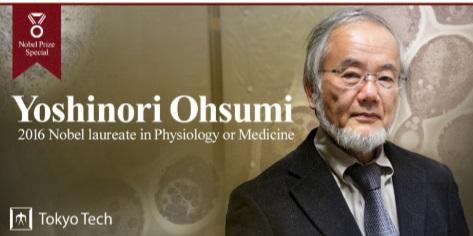 Prof. Yoshinori